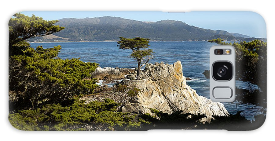 17-mile Galaxy S8 Case featuring the photograph Lone Cypress On 17-mile Drive by Carol M Highsmith