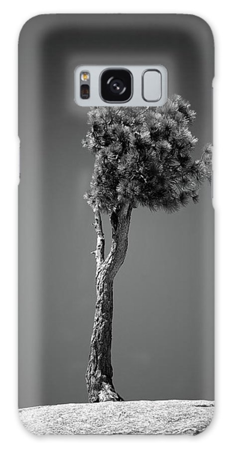 Black & White Galaxy S8 Case featuring the photograph Lone Pine II by Peter Tellone