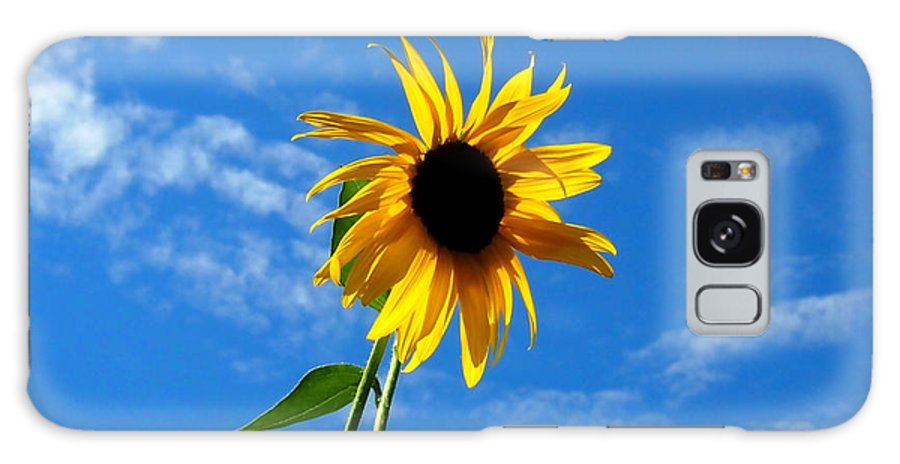 Nature Galaxy S8 Case featuring the photograph Lone Sunflower In A Summer Blue Sky by Amy McDaniel