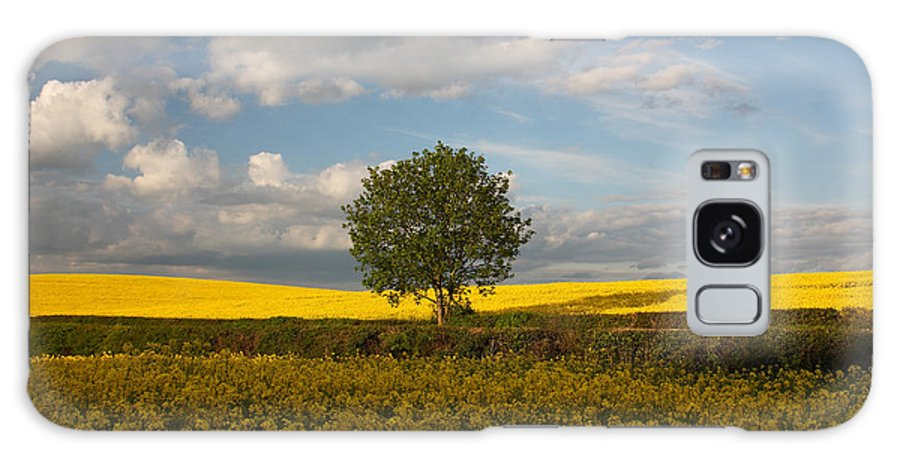 Lone Tree Galaxy S8 Case featuring the photograph Lone Tree by Graham Custance