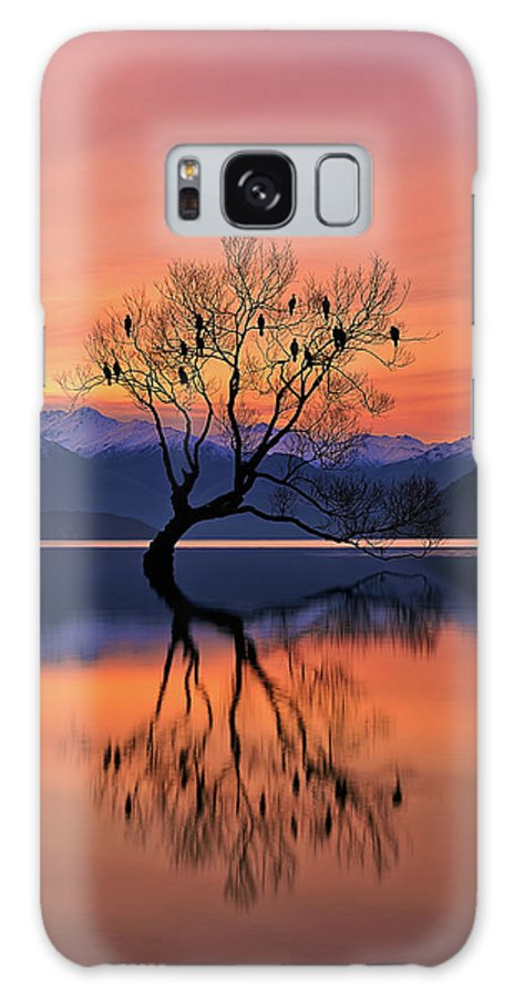 Tree Galaxy S8 Case featuring the photograph Lone Tree Is Not Lonely by Mei Xu