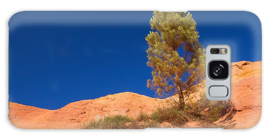 Colorado Galaxy S8 Case featuring the photograph Lonely Pine On The Ocher Hill by Jaroslav Frank
