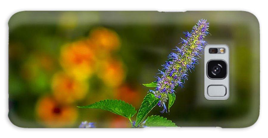 Look At Me Garden Galaxy S8 Case featuring the photograph Look At Me Garden by LeeAnn McLaneGoetz McLaneGoetzStudioLLCcom