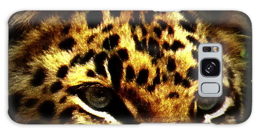 Jaguar Galaxy S8 Case featuring the photograph Looking For Prey by Amanda Eberly-Kudamik