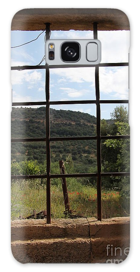 Looking Galaxy S8 Case featuring the photograph Looking Out by Diane Greco-Lesser