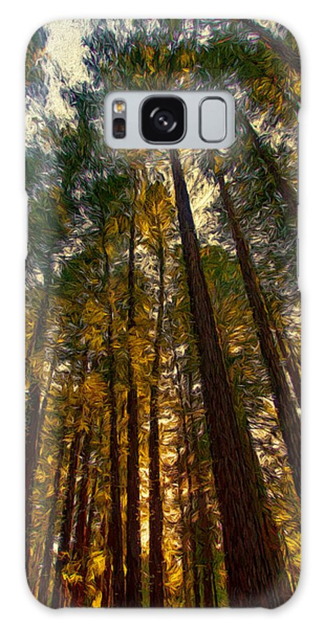 Redwoods Galaxy S8 Case featuring the mixed media Looking Up by John K Woodruff