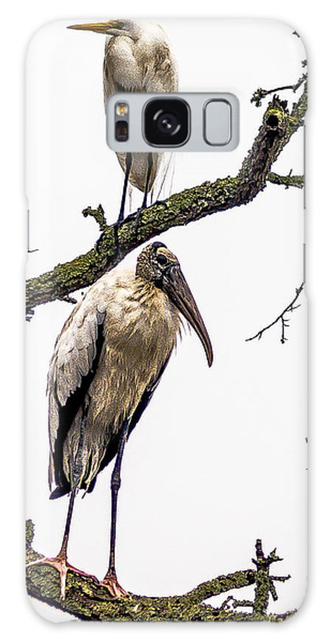 Great Egret Galaxy S8 Case featuring the photograph Lookouts by Charles Moore