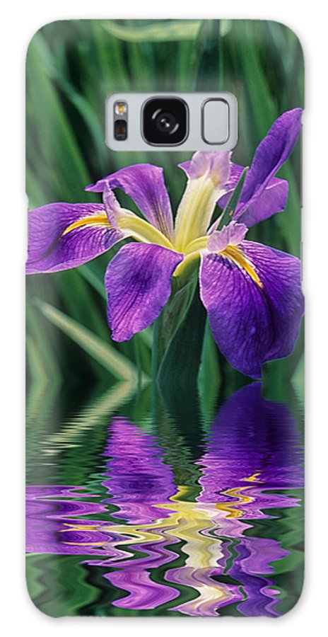 A Louisiana Iris Stands In Water Galaxy Case featuring the photograph Louisiana Iris by Keith Gondron