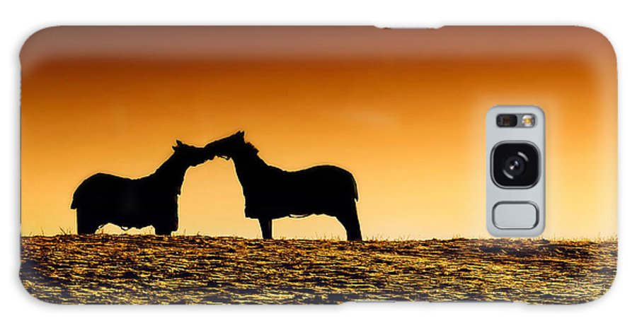 Horses Galaxy S8 Case featuring the photograph Love by Kent Mathiesen