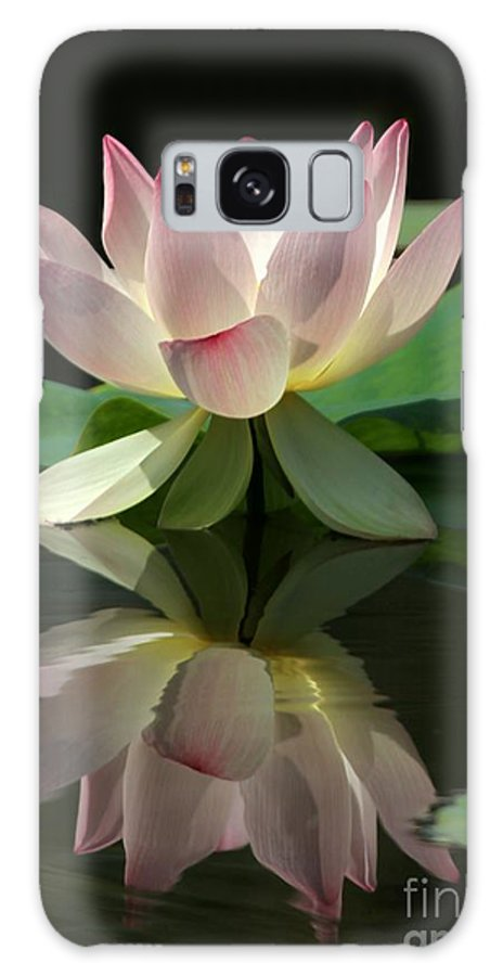 Lotus Galaxy S8 Case featuring the photograph Lovely Lotus Reflection by Sabrina L Ryan