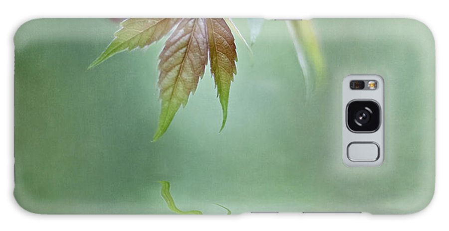 Vine Galaxy S8 Case featuring the photograph Loving Greens II by Maria Ismanah Schulze-Vorberg
