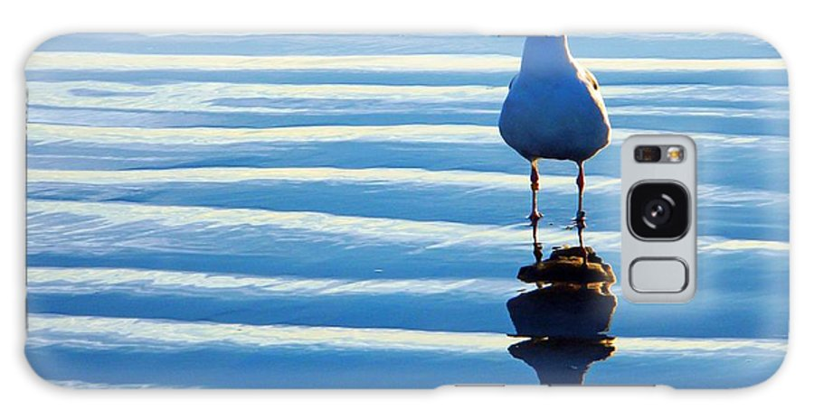 Birds Galaxy S8 Case featuring the photograph Low Tide Mirror by Everette McMahan jr