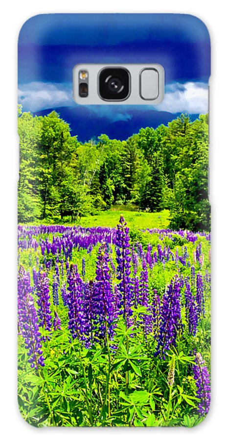 Crawford Notch Galaxy S8 Case featuring the photograph Lupines Light by Greg Fortier