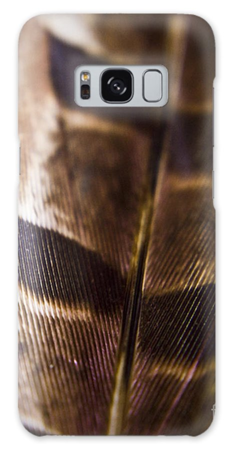 Feather Galaxy S8 Case featuring the photograph Macro Pheasant by Andrea Goodrich