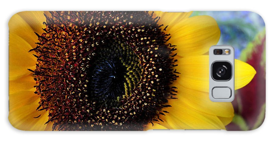 Sunflower Galaxy S8 Case featuring the photograph Macro Sunflower by Kristine Merc