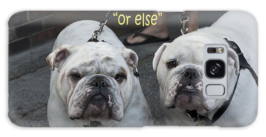 Dogs Galaxy S8 Case featuring the photograph Mafia Bullies by Russell Trevail