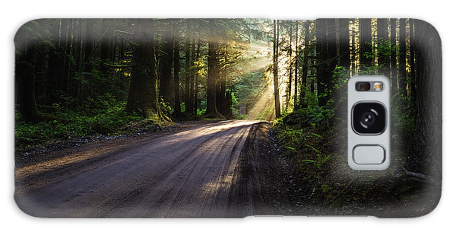 God Rays Galaxy S8 Case featuring the photograph Magic Of Redwood by Vishwanath Bhat