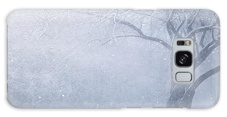 Snow Galaxy Case featuring the photograph Magic Of The Season by Carrie Ann Grippo-Pike