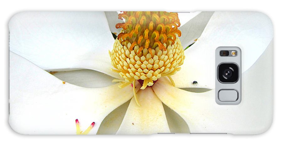 Magnolia Galaxy S8 Case featuring the photograph Magnolia Blossom by Karen Beasley