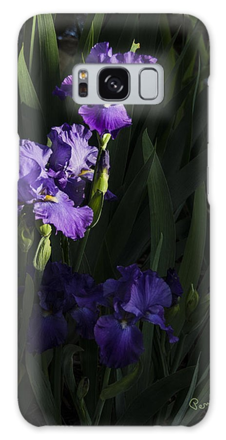 Flowers Galaxy S8 Case featuring the photograph Majestic Spotlight by Penny Lisowski