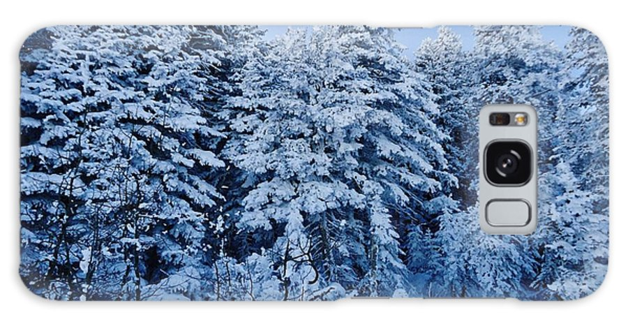 Evergreens Galaxy S8 Case featuring the photograph Majestic Winter Wonderland by Lois  Rivera