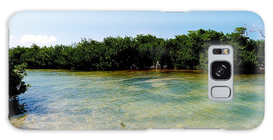 Color Galaxy S8 Case featuring the photograph Mangrove @ Safehaven Sound by Amar Sheow