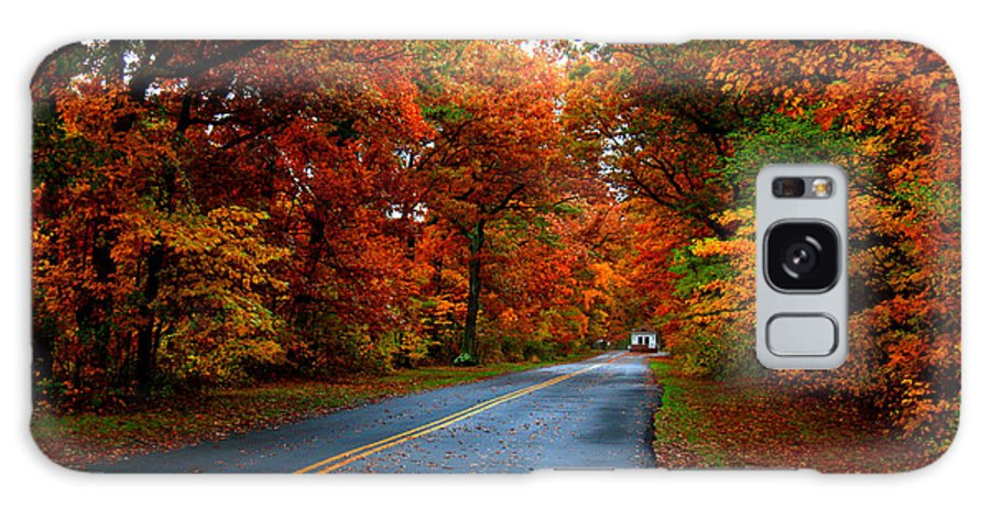 Trees Galaxy S8 Case featuring the photograph Maple Road by Valerie Fuqua