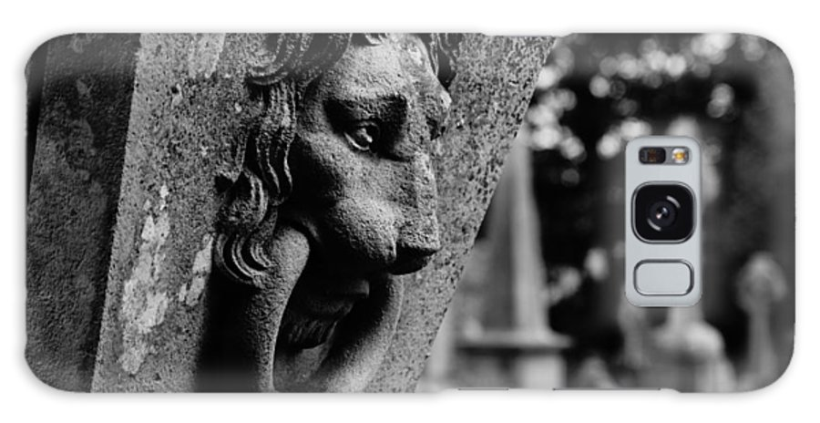 Lion Marble Tomb Black White Ring Irish Ireland Galaxy S8 Case featuring the photograph Marble Lion by John Murphy