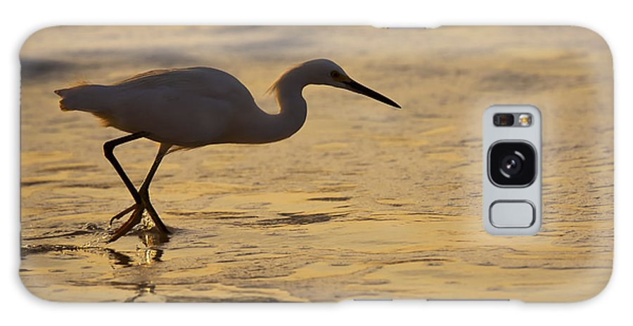 Egret Galaxy S8 Case featuring the photograph March Of The Egret by Mike Dawson