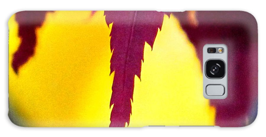 Maroon Galaxy Case featuring the photograph Maroon And Yellow by Ian MacDonald