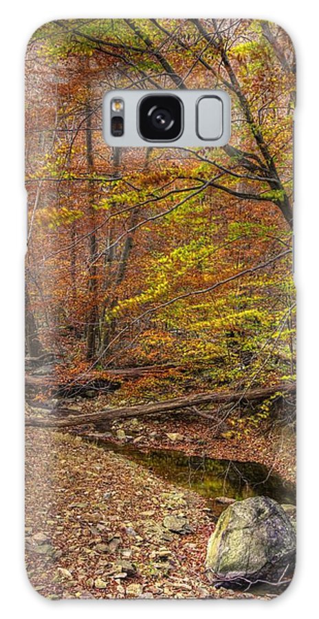 Maryland Galaxy S8 Case featuring the photograph Maryland Country Roads - Autumn Colorfest No. 7 - Catoctin Mountains Frederick County Md by Michael Mazaika