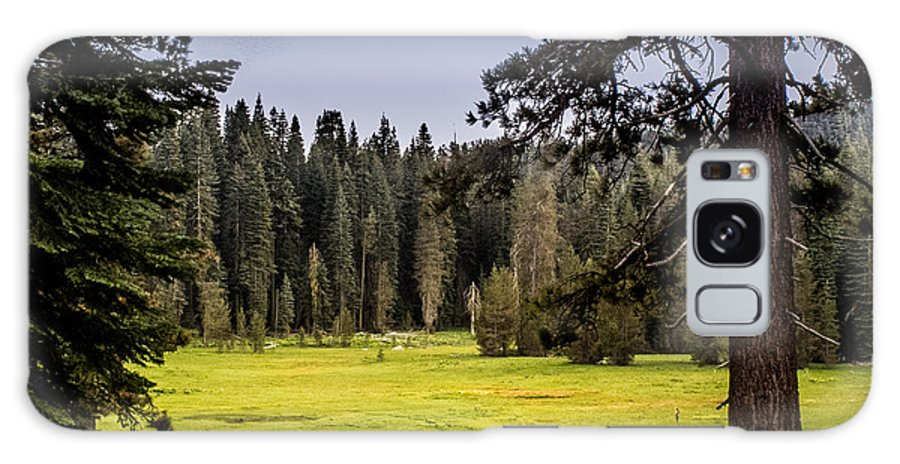 Yosemite Galaxy S8 Case featuring the photograph May I Intrude On Your Meadow by Susan Eileen Evans