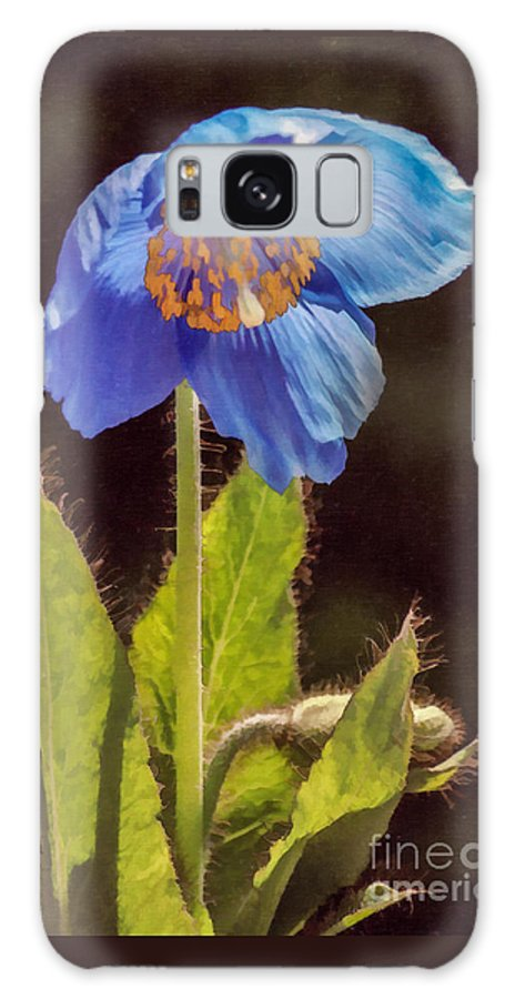 Meconopsis Galaxy S8 Case featuring the digital art Meconopsis Himalayan Blue Poppy by Liz Leyden