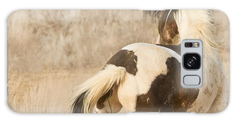 Horse Galaxy S8 Case featuring the photograph Medicine Hat Turns by Carol Walker