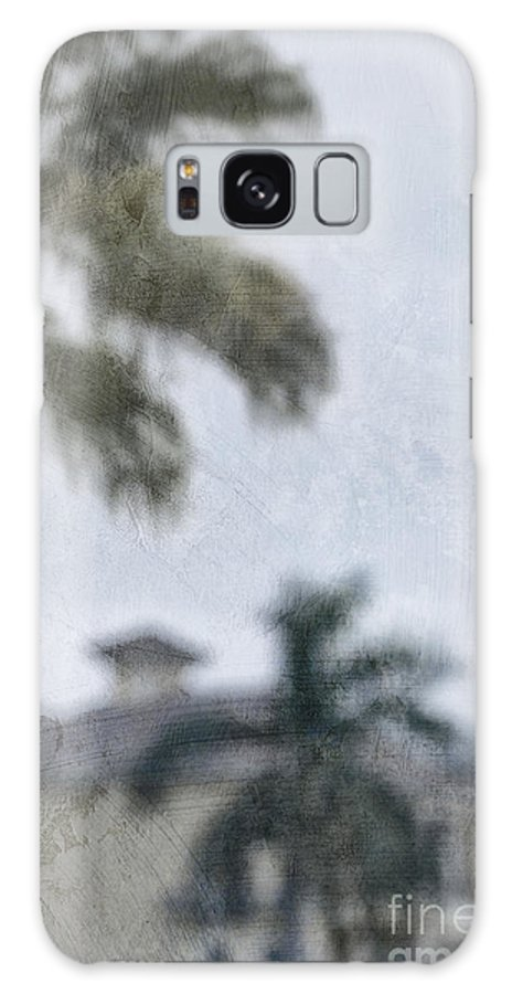 Summer; House; Home; Outside; Outdoors; Florida; Floridian; Mansion; Palm; Tree; Palm Tree; Sky; Nobody; Expensive; Retreat; Tower; Naples; Palace; Architecture; Roof; Windows; Blurry; Defocused Galaxy S8 Case featuring the photograph Memories Of The Tropics by Margie Hurwich