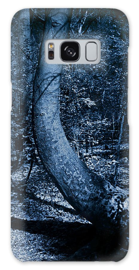 Woods Galaxy S8 Case featuring the photograph Midnight Woods by John Cardamone