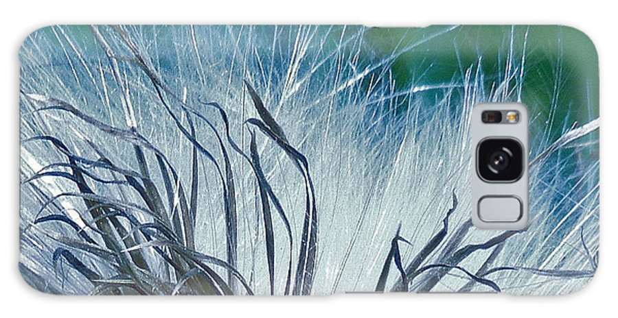 Digital Photography Galaxy S8 Case featuring the photograph Milkweed by Ellen Stockdale Wolfe