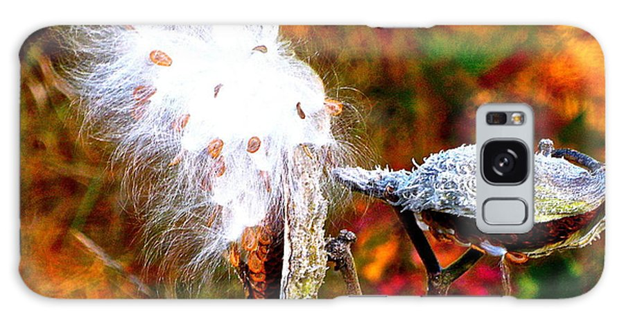 Milkweed Galaxy S8 Case featuring the photograph Milkweed by Lisa Amport