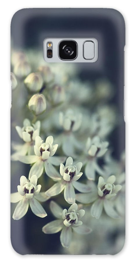 Milkweed Flowers Galaxy S8 Case featuring the photograph Milkweed by Saija Lehtonen
