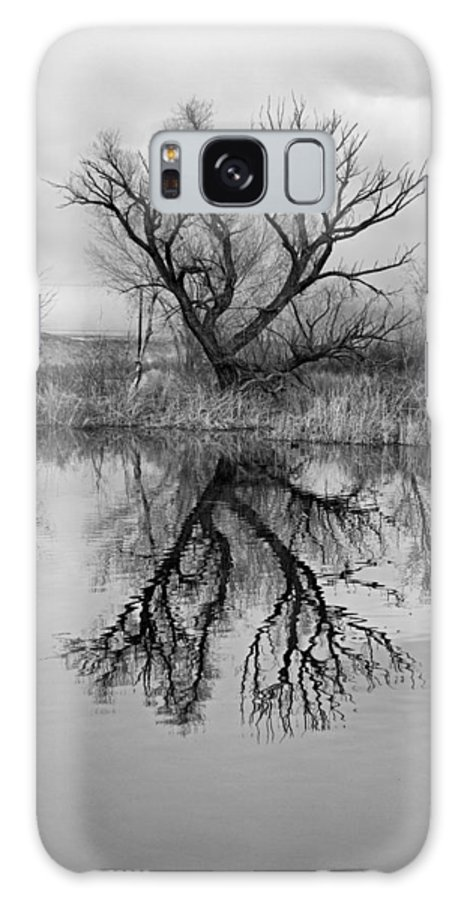 Mill Galaxy S8 Case featuring the photograph Mill Pond Tree by Newman Artography