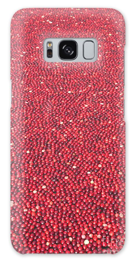 Cranberries Galaxy S8 Case featuring the photograph Millions Of Cranberries by Linda Matlow