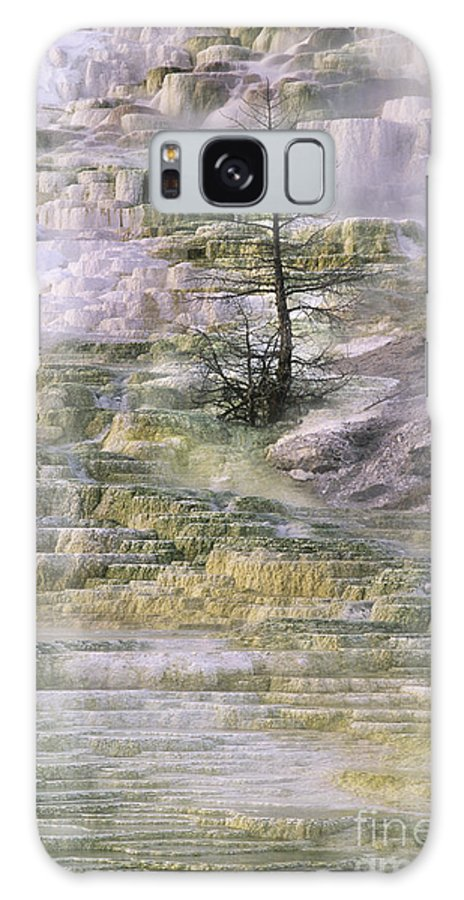 North America Galaxy S8 Case featuring the photograph Minerva Springs Terraces Yellowstone National Park by Dave Welling
