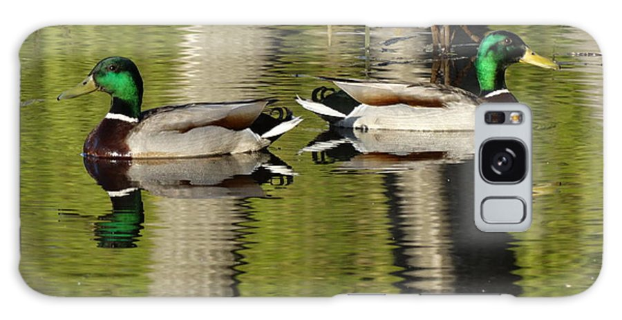 Duck Galaxy S8 Case featuring the photograph Mirror Images by Laura Gillmer
