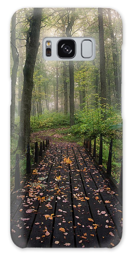 Vanishing Point Galaxy S8 Case featuring the photograph Misty Morning by Christian Lindsten