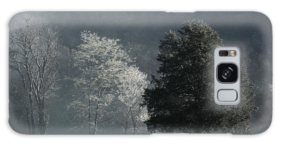 Trees Galaxy S8 Case featuring the photograph Misty Morning Trees by Robert Camp