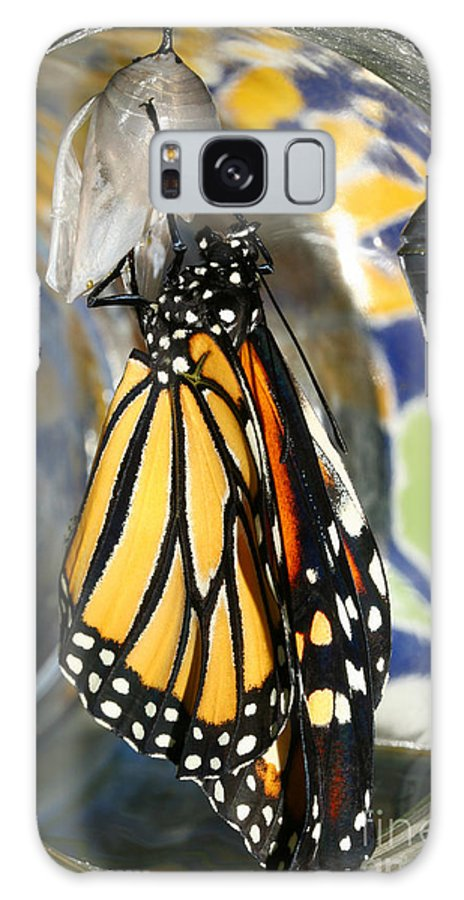 Monarch Galaxy S8 Case featuring the photograph Monarch In A Jar by Steve Augustin