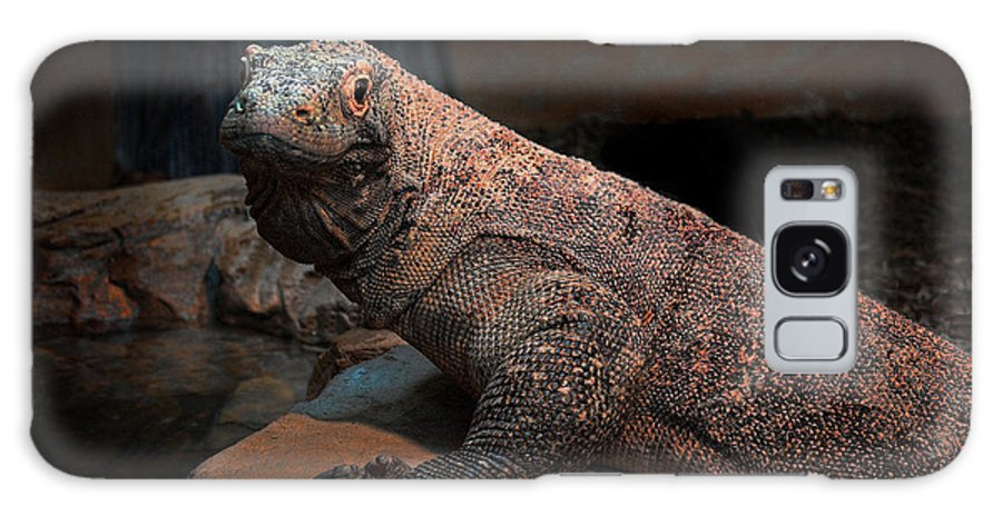 Monitor Galaxy S8 Case featuring the photograph Monitor Lizard by Carlos Diaz