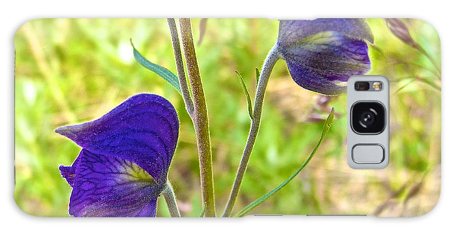 Monkshood On Alpine Tundra Trail By Eielson Visitor's Center Galaxy S8 Case featuring the photograph Monkshood On Alpine Tundra Trail At Eielson Visitor's Center In Denali Np-ak by Ruth Hager