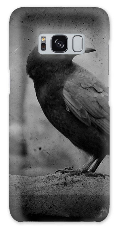 Monochrome Galaxy S8 Case featuring the photograph Monochrome Crow by Gothicrow Images