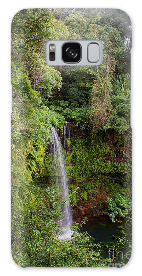 Nature Galaxy S8 Case featuring the photograph Montagne D'ambre National Park Madagascar 5 by Rudi Prott